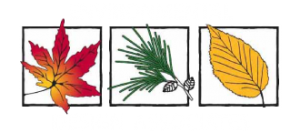 enviro-design-logo-medium
